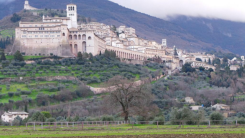 Sant'Elisabetta, OFS presente in Basilica durante Messe, martedì preghiera