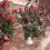 Santa Messa il 22 maggio a sera in Tomba per festa Santa Rita